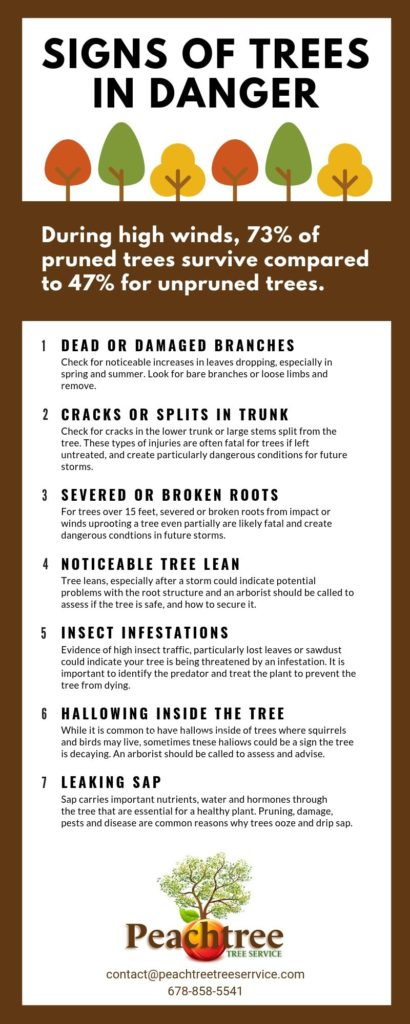 Signs of trees