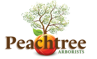 Peachtree Arborists